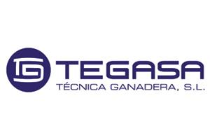 logo tegasa