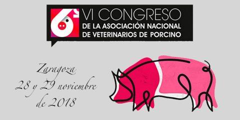 VI Congreso de la Asociación Nacional de Veterinarios de Porcino